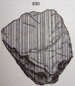 Plagioclase striations